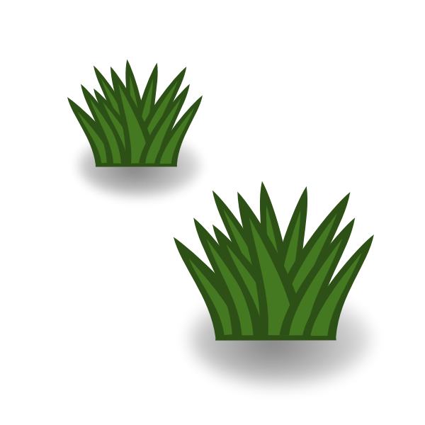 Two grass bushes