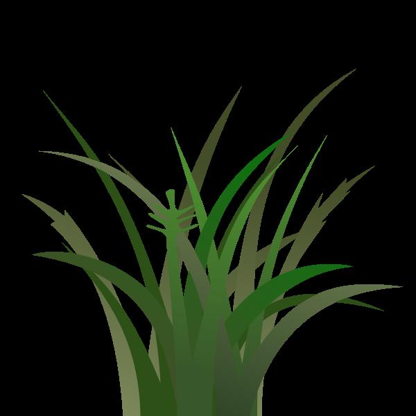 Dark grass vector clip art