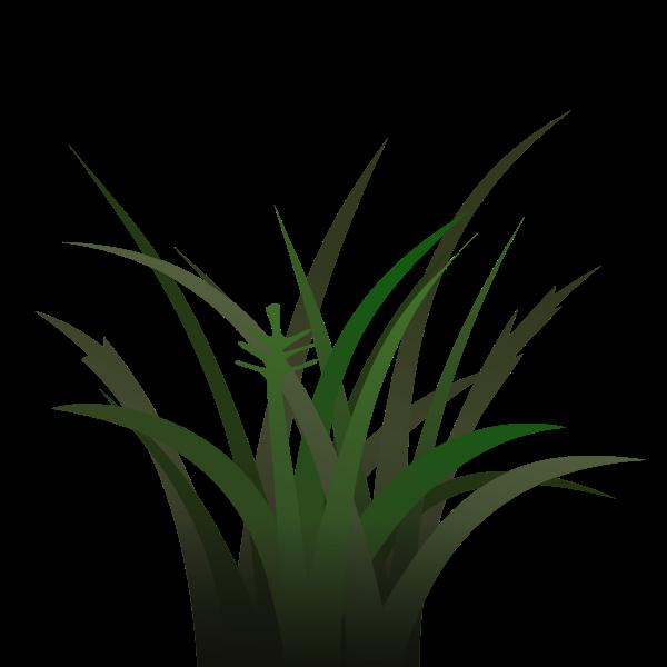 Bunch of grass vector illustration