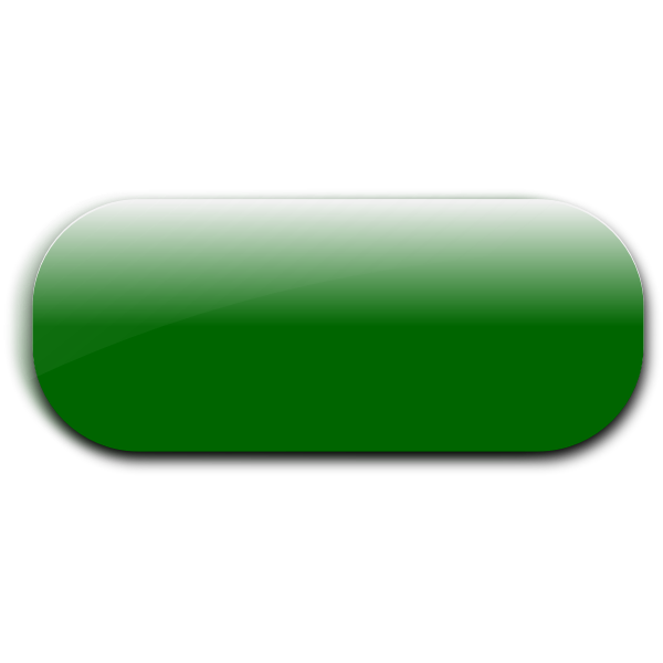 Horizontal pill shaped green button vector image
