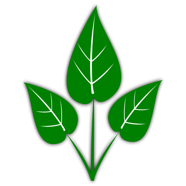 gsagri04 Green Leaf