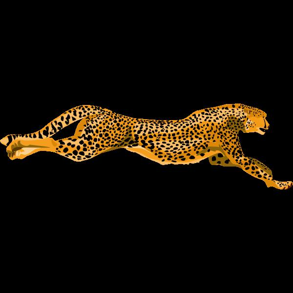 Leopard Cheetah Vector Image Free Svg