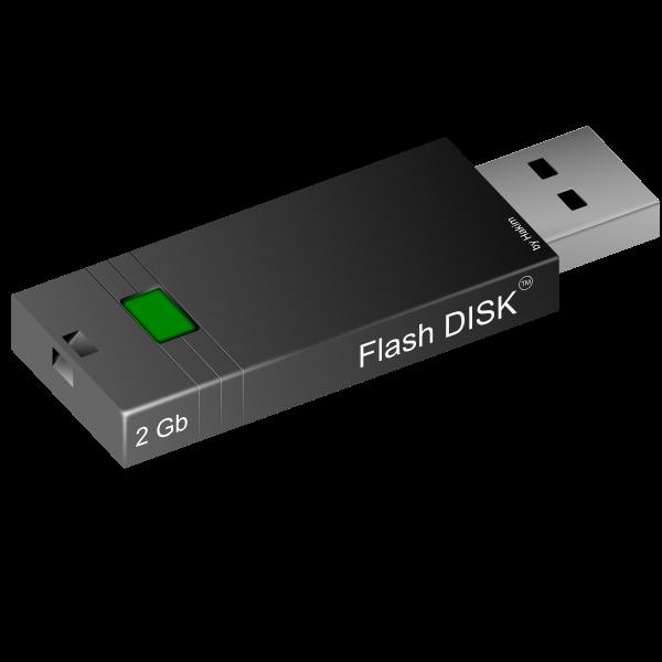 2GB flash disk vector image