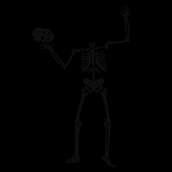 Human skeleton serving head vector graphics