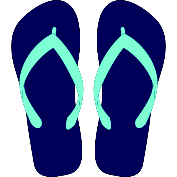 Flipflops vector drawing