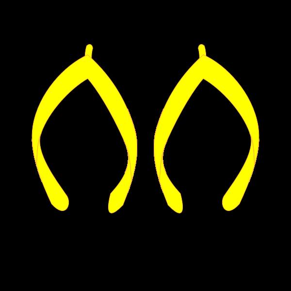 Flipflops vector drawing