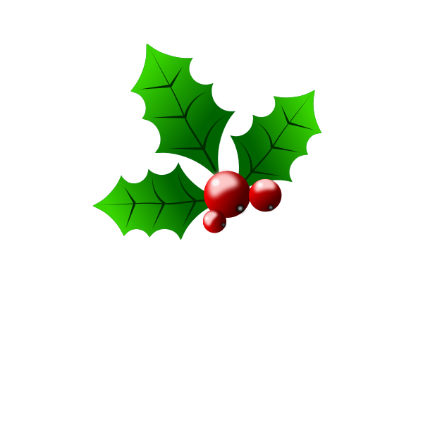 Vector clip art of season holly detail