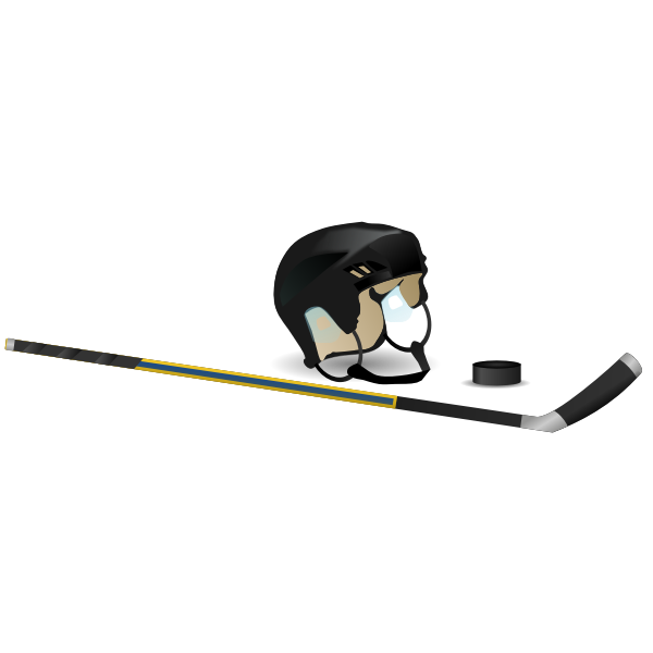 Ice hockey stick, cap and puck vector image