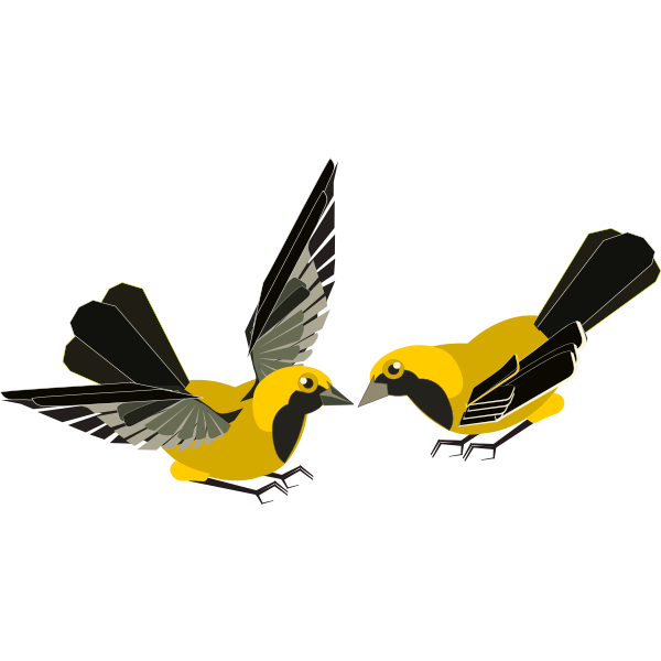 Vector clip art of yellow and black bird