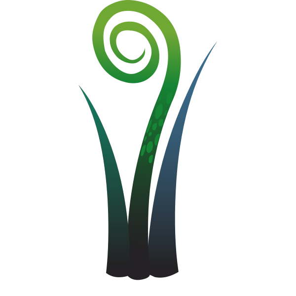 Vector image of leaf like plant with a spiral top