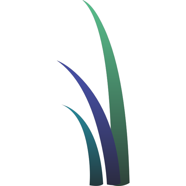 Image of three colored grass leaves