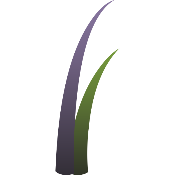 Vector drawing of purple and green llmenskie plant