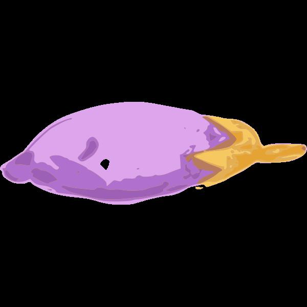 jiangyi 99 eggplant 02