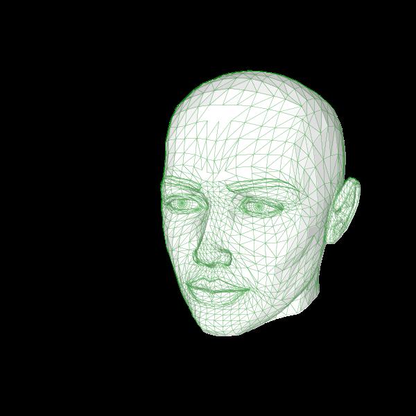 Female web head vector illustration
