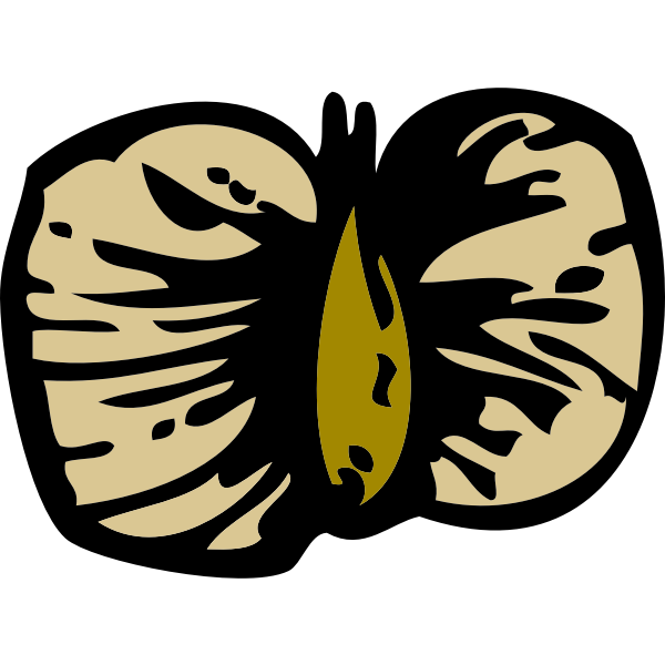 Vector image of birch seed