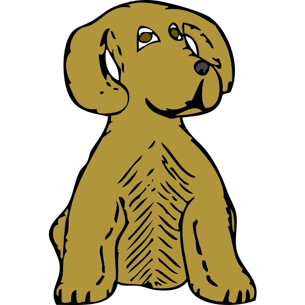 dog front view