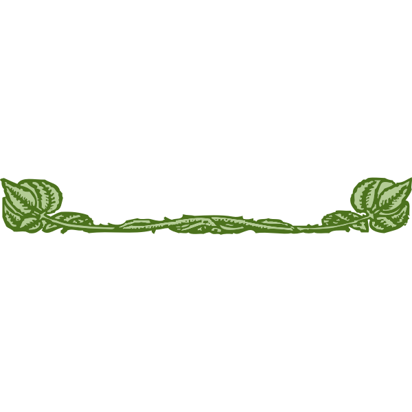 Vector drawing of green leaves border decoration
