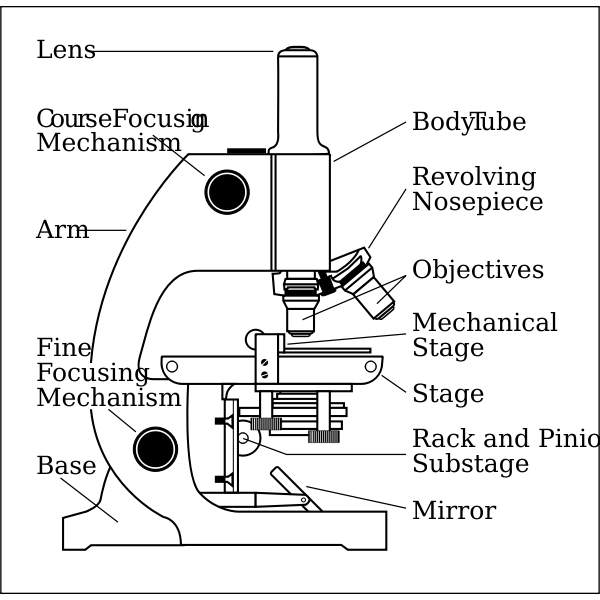 Microscope Side Vector Drawing With Parts Labelled Free Svg