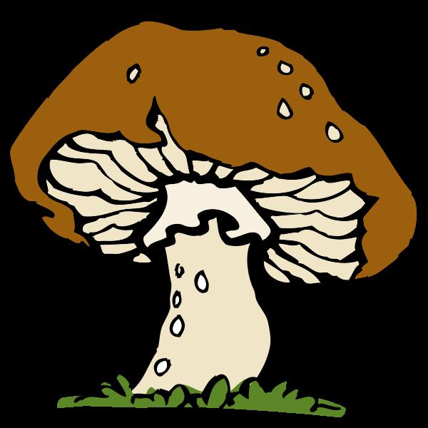 Vector image of a big mushroom