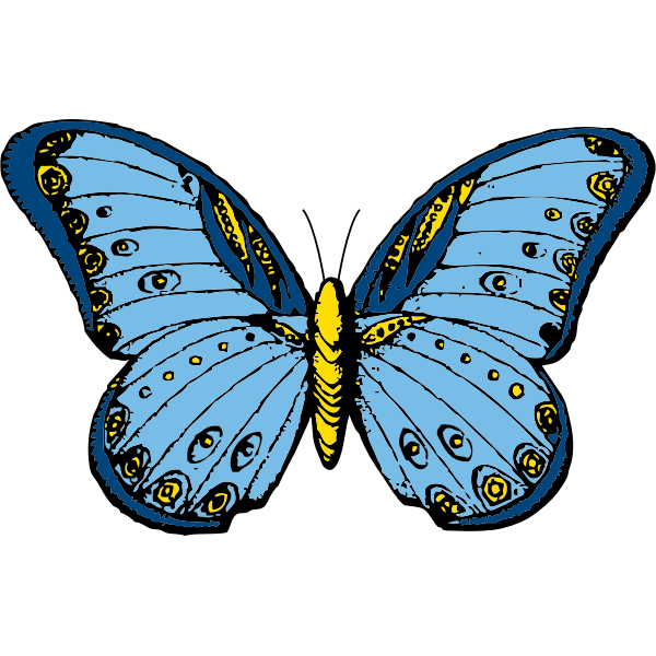 Blue and yellow butterfly vector clip art