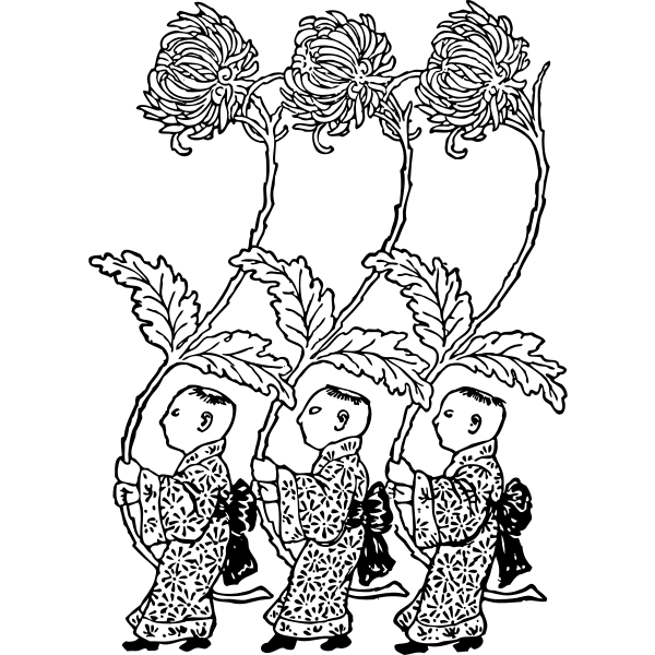 chrysanthemum carriers vector image