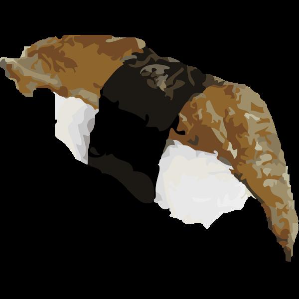 Eel sushi vector art