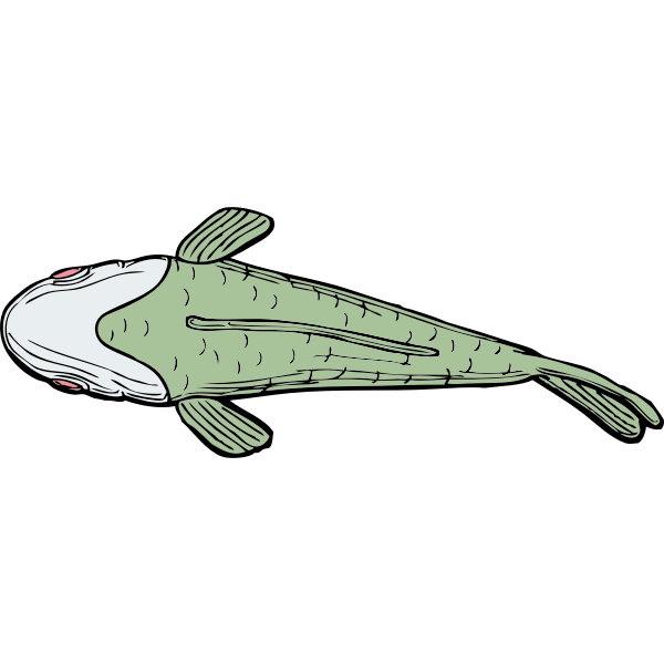 Ugly fish top view vector illustration