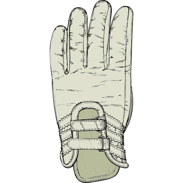 Golf glove vector image