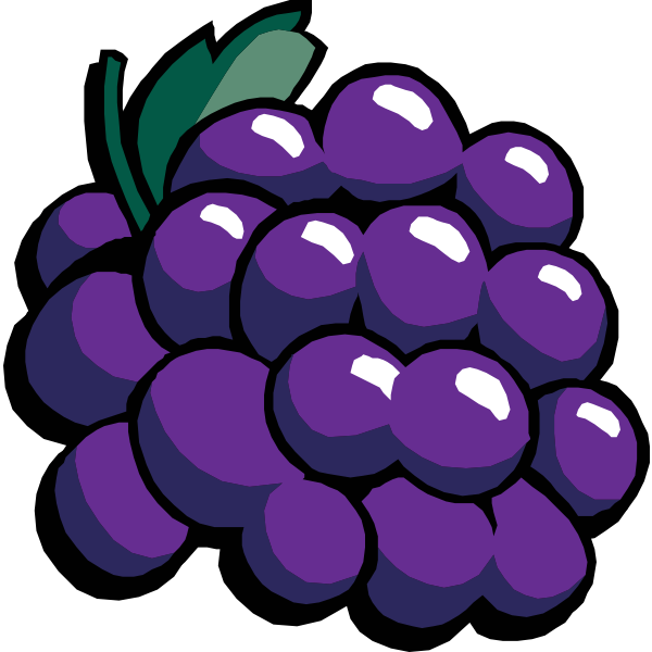 Black grapes vector clip art
