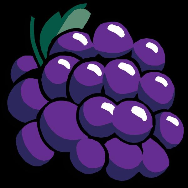 Black grapes vector clip art