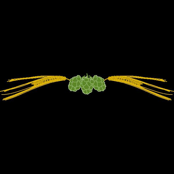 Hops and barley vector