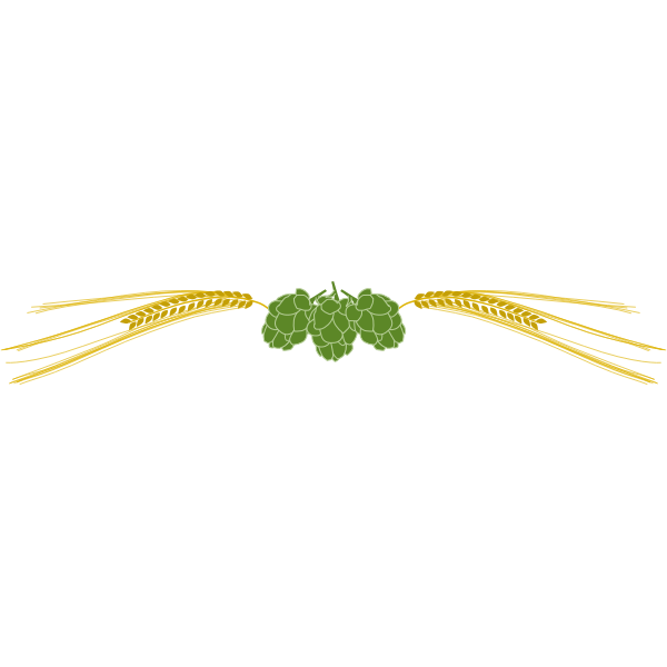 Hops and barley vector