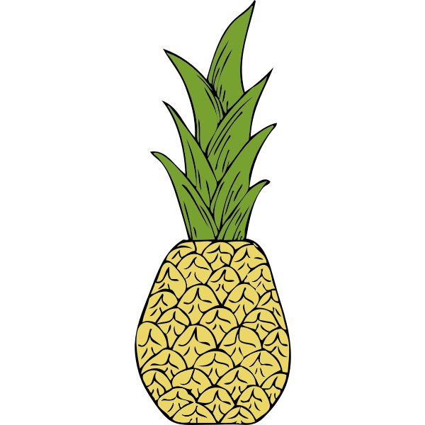 Vector drawing of pineapple
