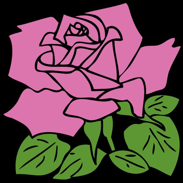 Vector clip art of rose