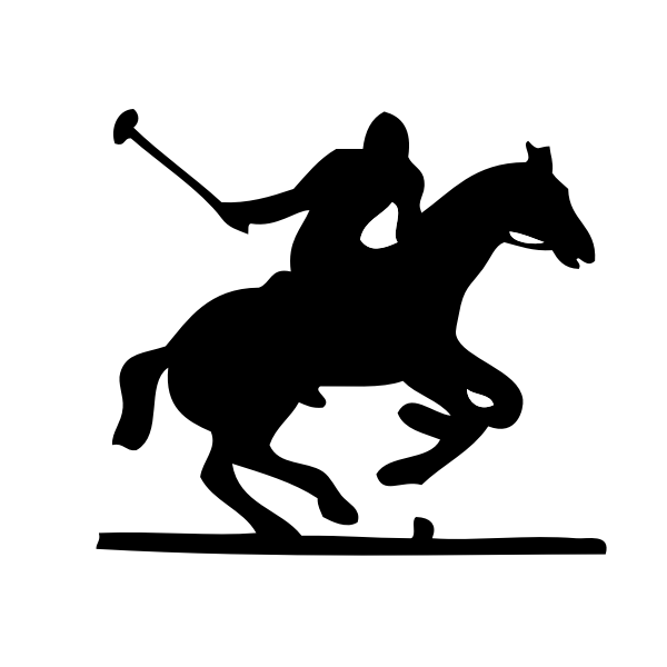 Vector illustration of polo player