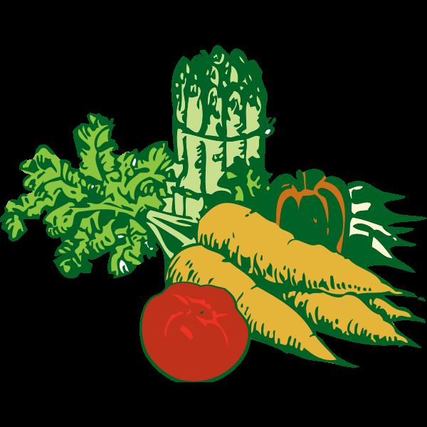 Vegetables vector graphics