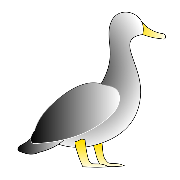 Jonathon's Duck
