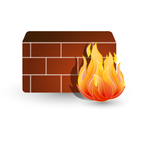 Firewall for computer networks vector image