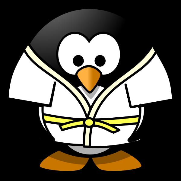 Judo penguin vector image