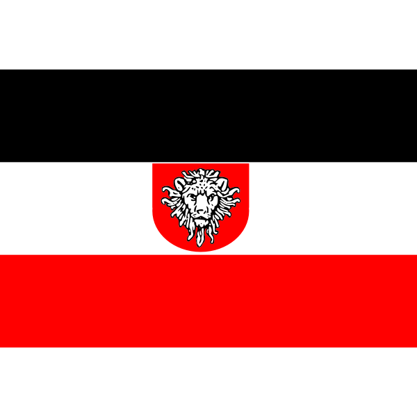 Flag of German East Africa vector image