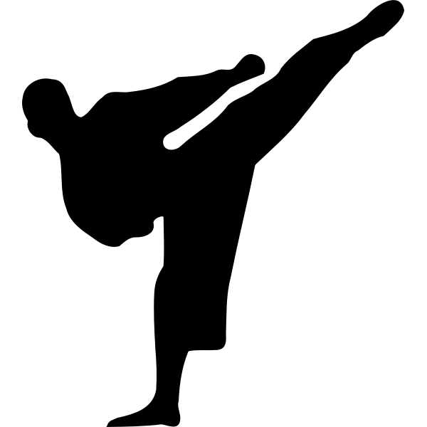 Karate guy silhouette vector illustration