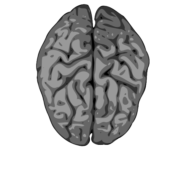 Blurry vector image of human brain