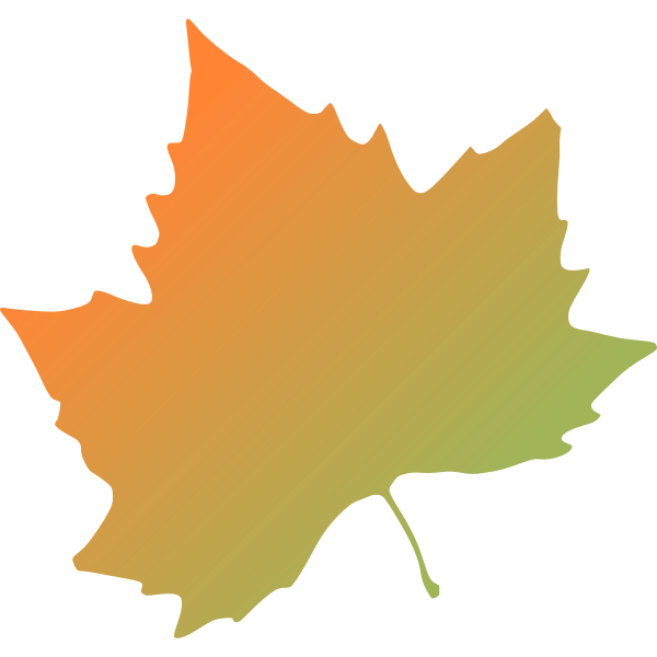 Plane tree autumn leaf vector clip art