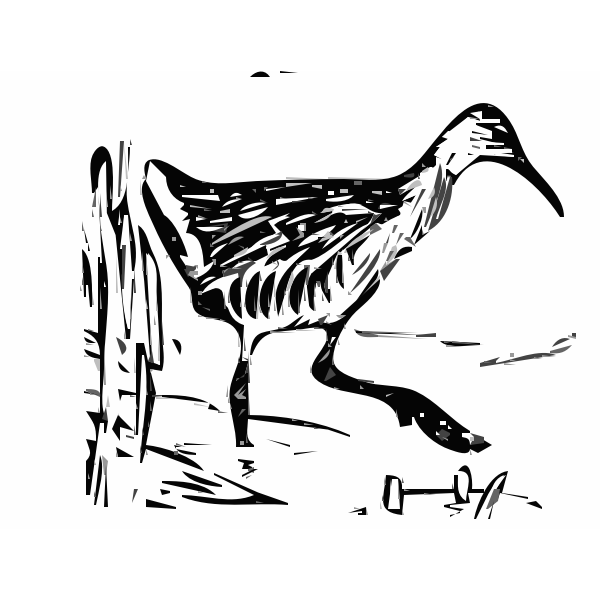 King rail in the marshland vector clip art