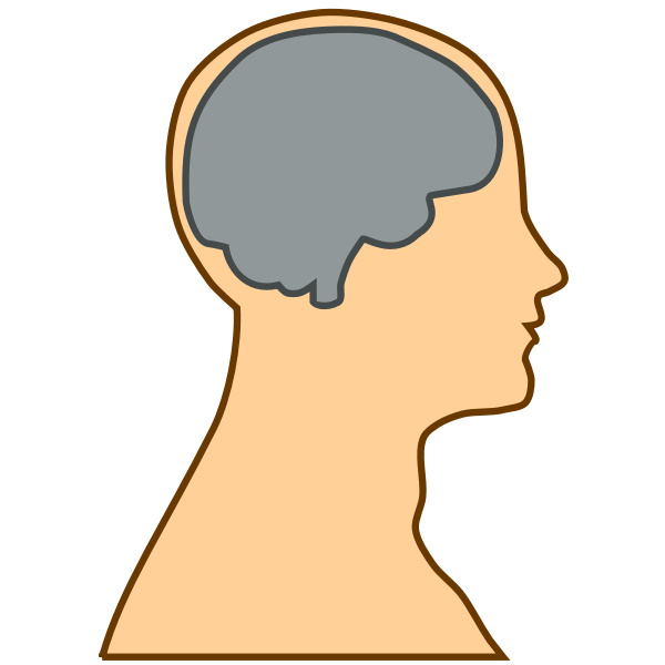 Silhouette of a brain inside a human vector illustration