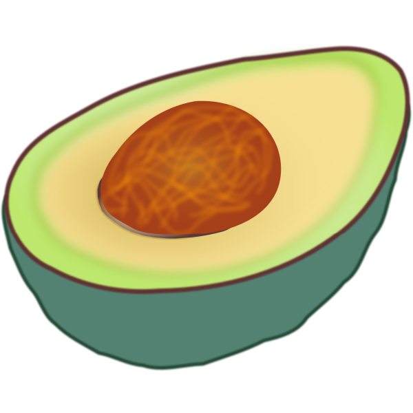 Avocado cut in half vector clip art