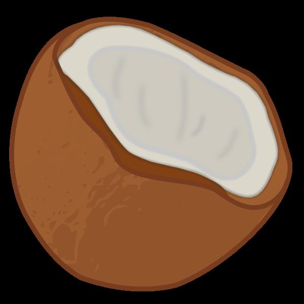 Vector image of half a coconut fruit icon