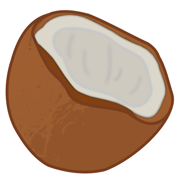 Vector image of half a coconut fruit icon