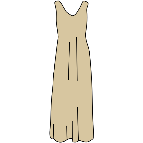 Brown dress vector image