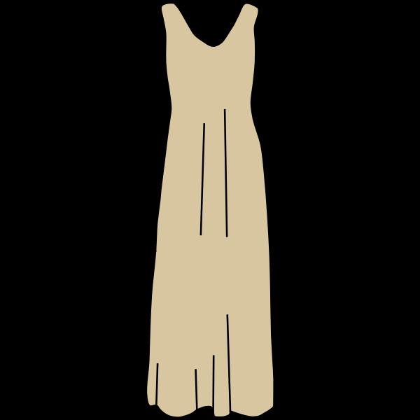Brown dress vector image